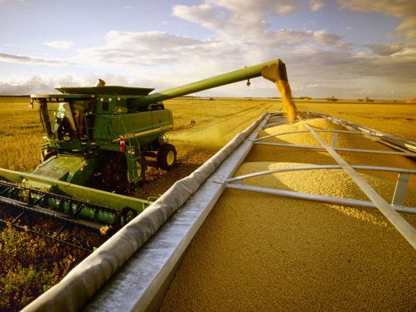 Em alta, safra de soja em 2015 deve atingir 94 milhões de toneladas